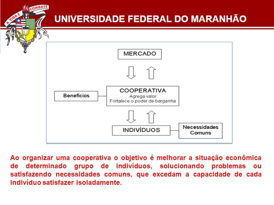 Ao organizar uma cooperativa o objetivo é melhorar a situação econômica de determinado grupo de indivíduos, solucionando problemas ou satisfazendo nec