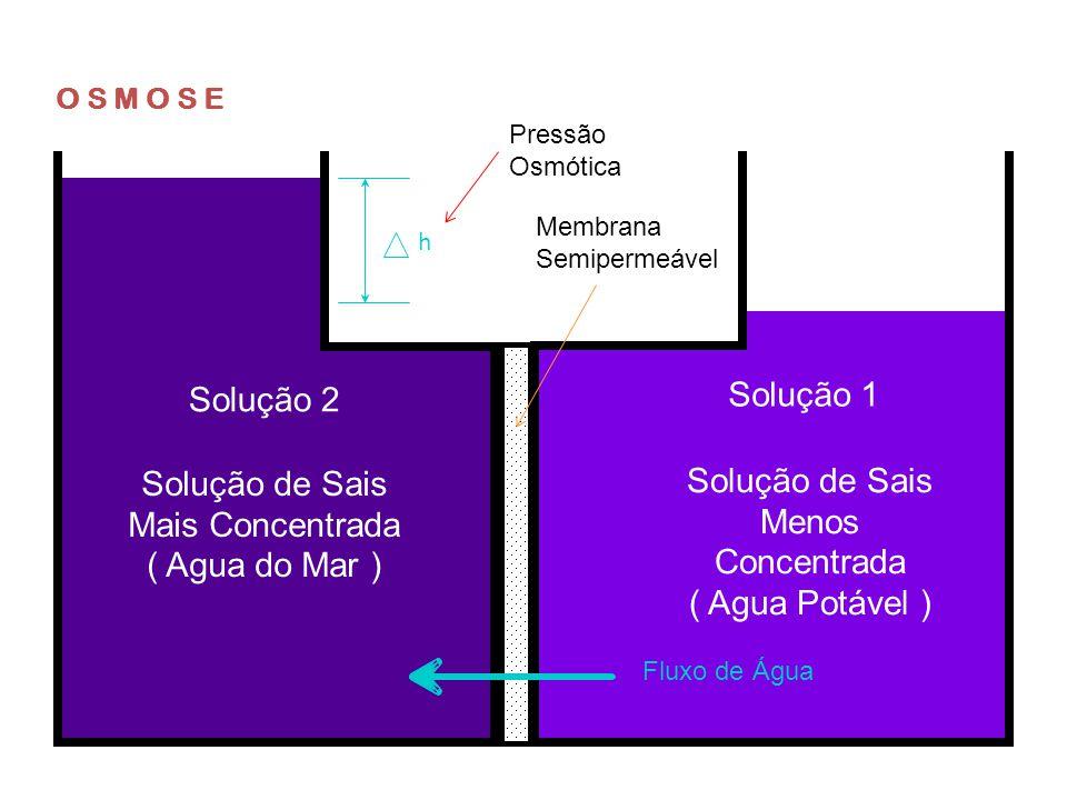 Pressão Fluxo de Água Solução 2Solução 1 Solução de Sais Mais Concentrada ( Agua do Mar ) Solução de Sais Menos Concentrada ( Agua Potável ) O S M O S E REVERSA