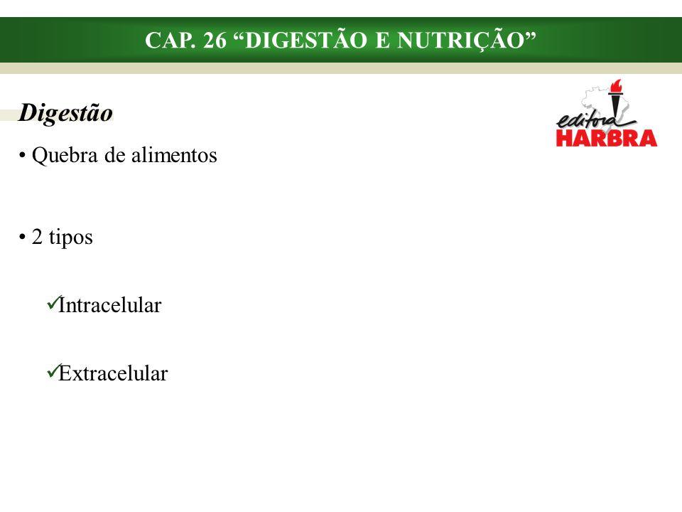 """CAP. 26 """"DIGESTÃO E NUTRIÇÃO"""" Quebra de alimentos 2 tipos Intracelular Extracelular Digestão"""