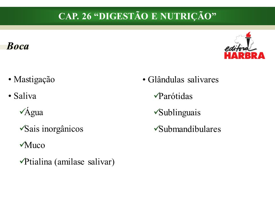 """Boca Mastigação Saliva Água Sais inorgânicos Muco Ptialina (amilase salivar) CAP. 26 """"DIGESTÃO E NUTRIÇÃO"""" Glândulas salivares Parótidas Sublinguais S"""