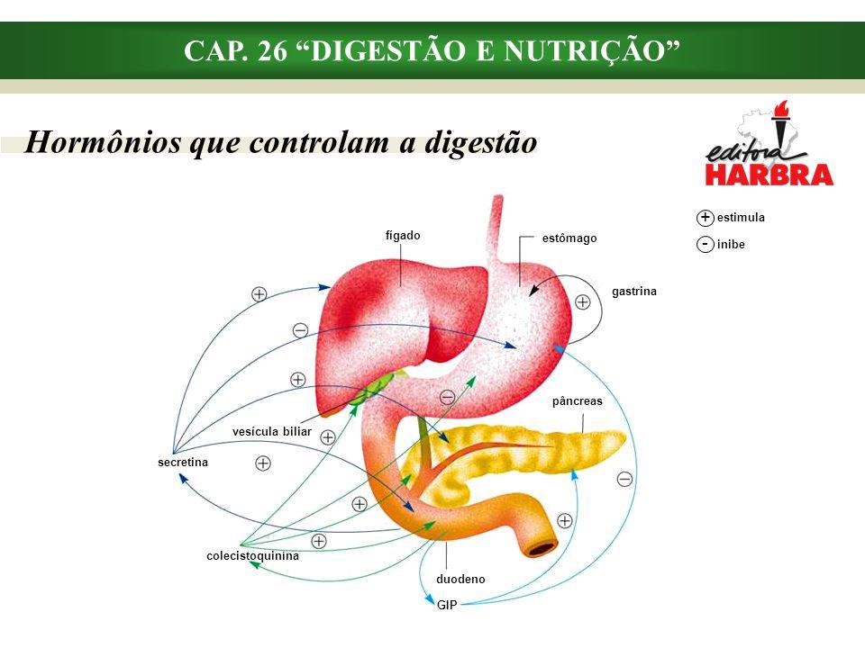"""Hormônios que controlam a digestão CAP. 26 """"DIGESTÃO E NUTRIÇÃO"""" fígado estômago gastrina pâncreas duodeno GIP colecistoquinina secretina vesícula bil"""