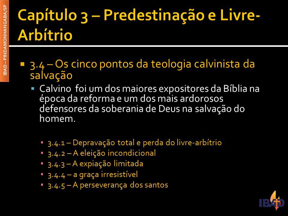 IBAD – PINDAMONHANGABA/SP  3.4 – Os cinco pontos da teologia calvinista da salvação  Calvino foi um dos maiores expositores da Bíblia na época da reforma e um dos mais ardorosos defensores da soberania de Deus na salvação do homem.