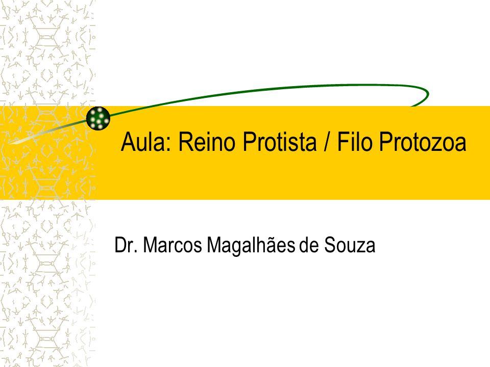Sporozoa 1.Plasmodium sp – Malária Parasito heteróxeno Através da picada do mosquito Anopheles – mosquito prego (fêmea), ocorre penetração no sangue da forma esporozoíto – fígado – merozoíto – hemáceas – trofozoíto - ocorre (esquizogônia assexuada) - merozoítos – libera novos merozoítos ou gametócitos.
