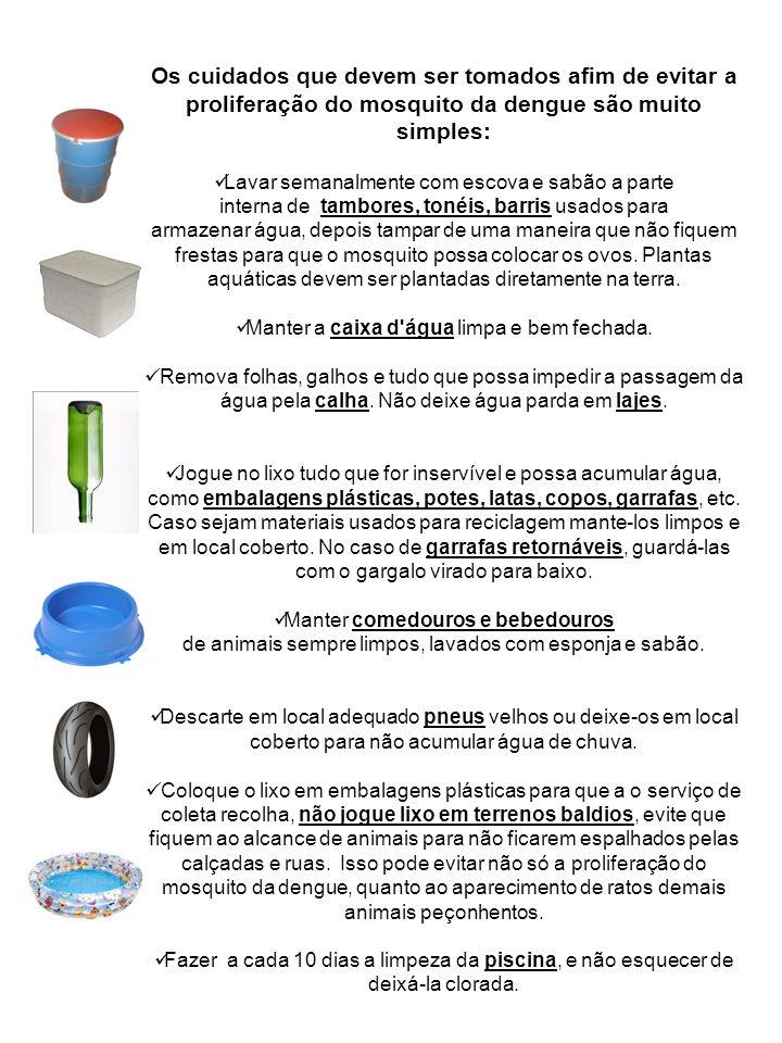 Os cuidados que devem ser tomados afim de evitar a proliferação do mosquito da dengue são muito simples: Lavar semanalmente com escova e sabão a parte