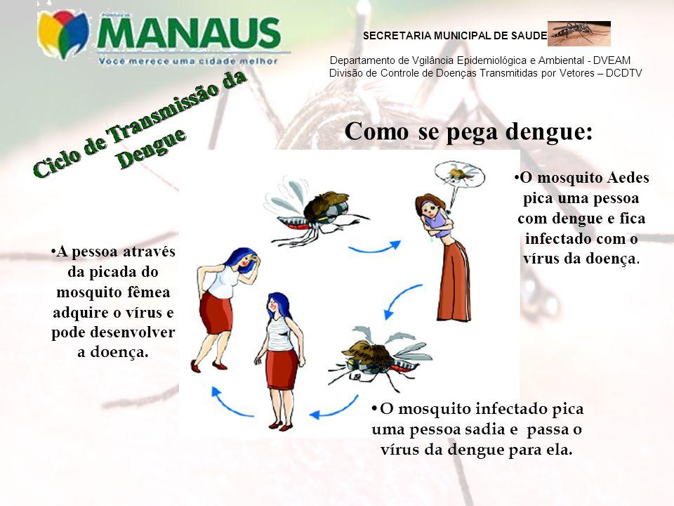 SECRETARIA MUNICIPAL DE SAUDE Departamento de Vgilância Epidemiológica e Ambiental - DVEAM Divisão de Controle de Doenças Transmitidas por Vetores – DCDTV Depois de 3 a 15 dias a dengue começa a se manifestar na pessoa.