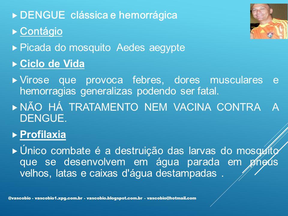  DENGUE clássica e hemorrágica  Contágio  Picada do mosquito Aedes aegypte  Ciclo de Vida  Virose que provoca febres, dores musculares e hemorragias generalizas podendo ser fatal.