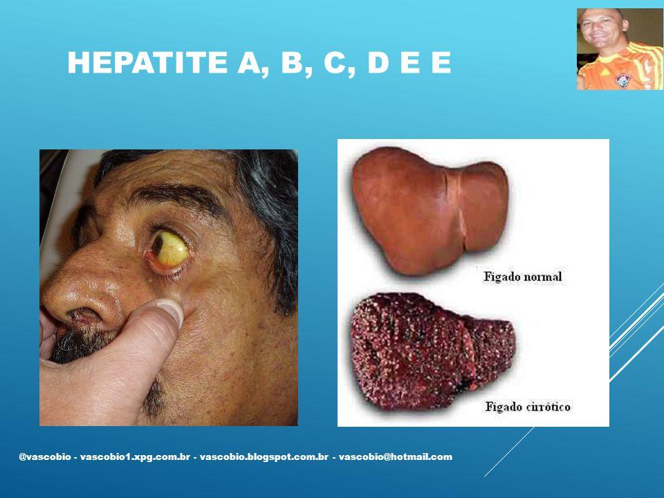 HEPATITE A, B, C, D E E @vascobio - vascobio1.xpg.com.br - vascobio.blogspot.com.br - vascobio@hotmail.com