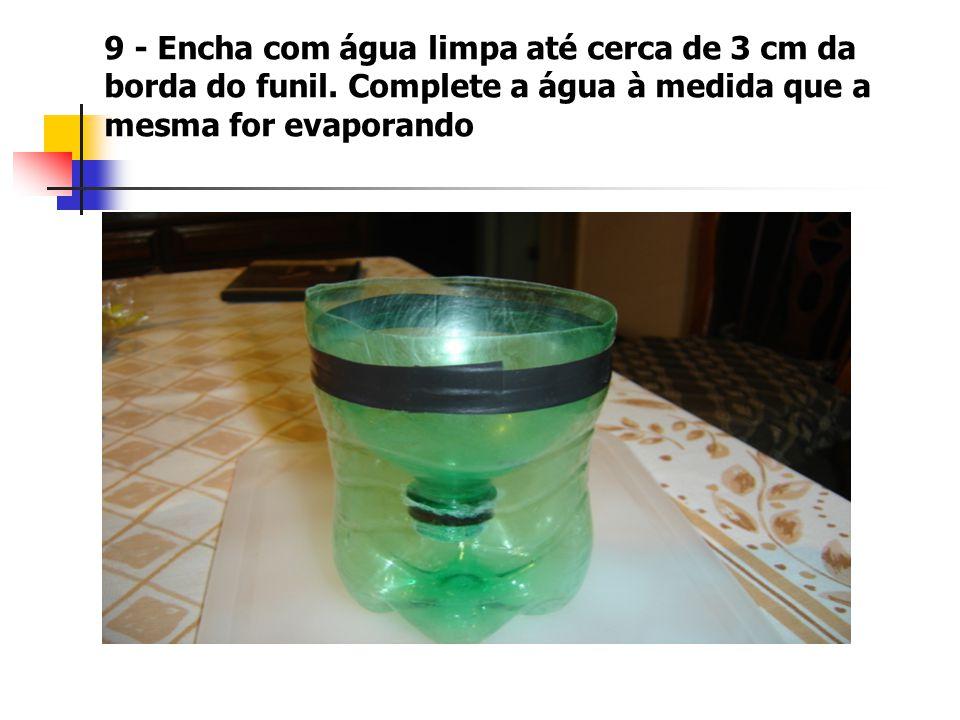 9 - Encha com água limpa até cerca de 3 cm da borda do funil.