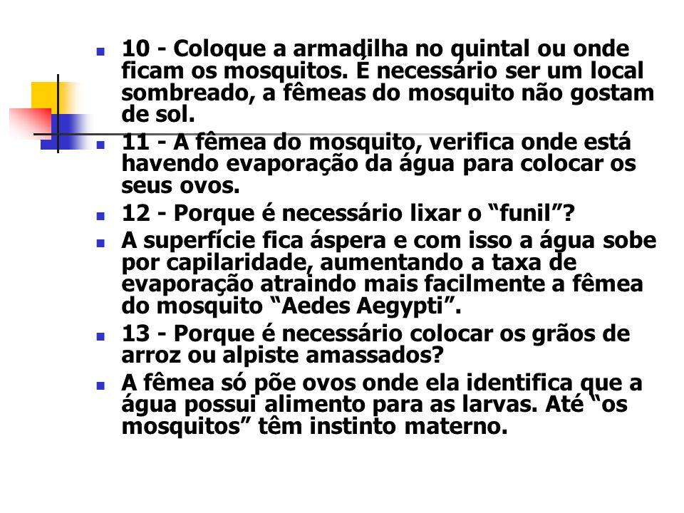 10 - Coloque a armadilha no quintal ou onde ficam os mosquitos.