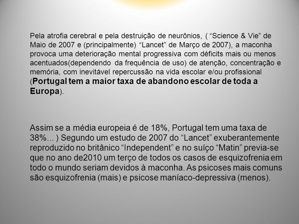 """Pela atrofia cerebral e pela destruição de neurônios, ( """"Science & Vie"""" de Maio de 2007 e (principalmente) """"Lancet"""" de Março de 2007), a maconha provo"""
