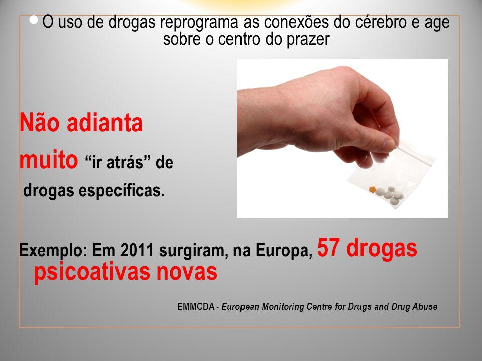 """O uso de drogas reprograma as conexões do cérebro e age sobre o centro do prazer Não adianta muito """"ir atrás"""" de drogas específicas. Exemplo: Em 2011"""