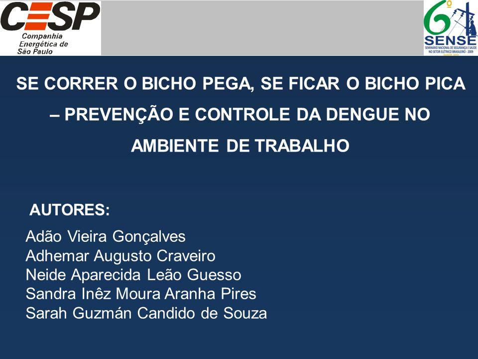 CESP – COMPANHIA ENERGÉTICA DE SÃO PAULO USINA HIDRELÉTRICA ENGENHEIRO SOUZA DIAS (JUPIÁ) Total de empregados: CESP: 273 Contratados: 500 SE CORRER O BICHO PEGA, SE FICAR O BICHO PICA – PREVENÇÃO E CONTROLE DA DENGUE NO AMBIENTE DE TRABALHO