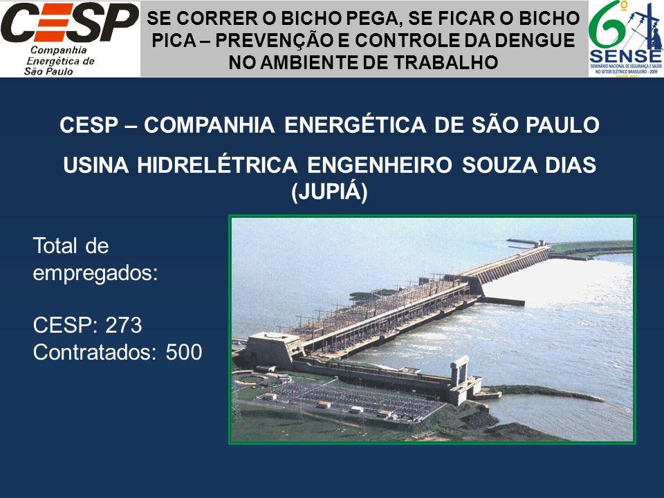 CESP – COMPANHIA ENERGÉTICA DE SÃO PAULO USINA HIDRELÉTRICA ENGENHEIRO SOUZA DIAS (JUPIÁ) Total de empregados: CESP: 273 Contratados: 500 SE CORRER O