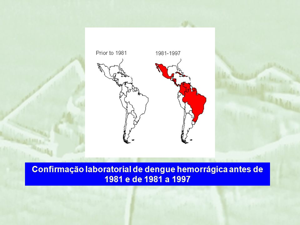 Em 1997, a dengue é a mais importante virose transmitida por mosquito.