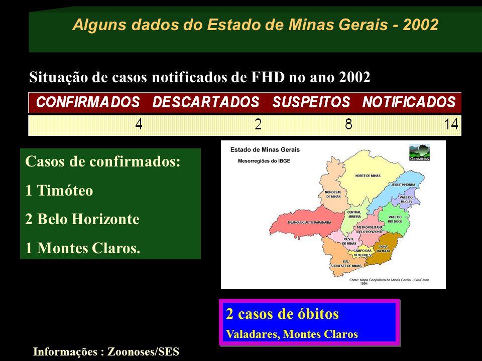Alguns dados do Estado de Minas Gerais - 2002 Informações : Zoonoses/SES Situação de casos notificados de FHD no ano 2002 Casos de confirmados: 1 Timó