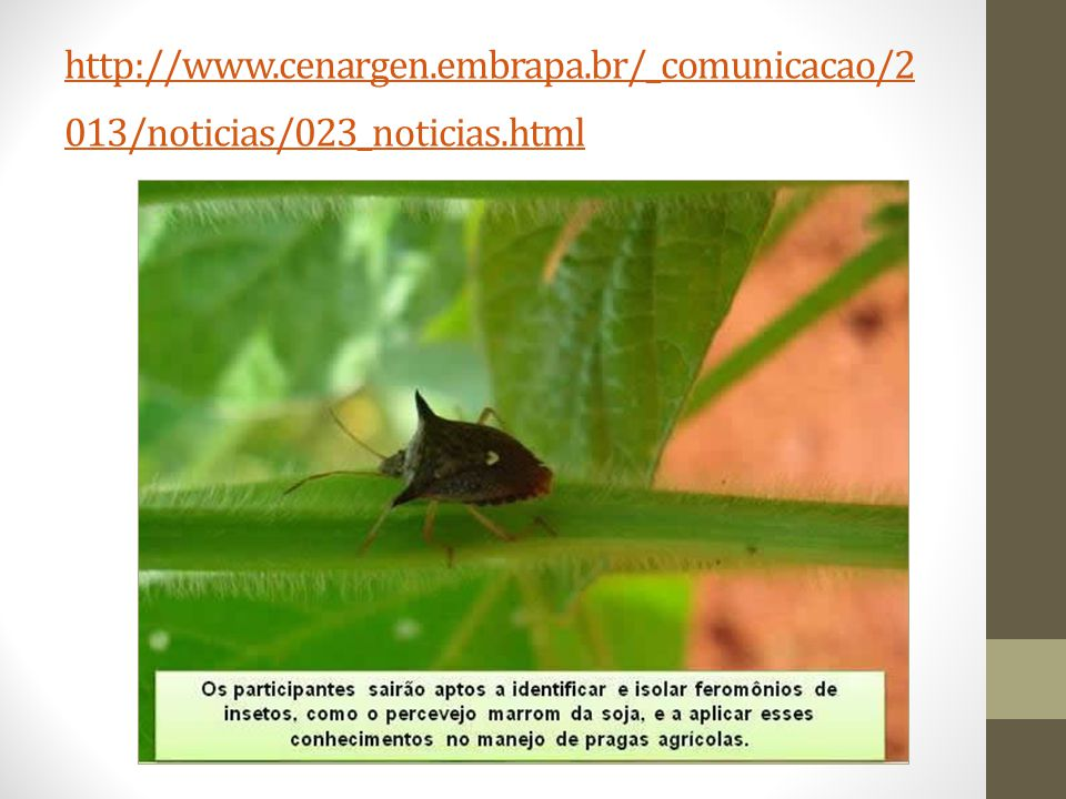 http://www.cenargen.embrapa.br/_comunicacao/2 013/noticias/023_noticias.html