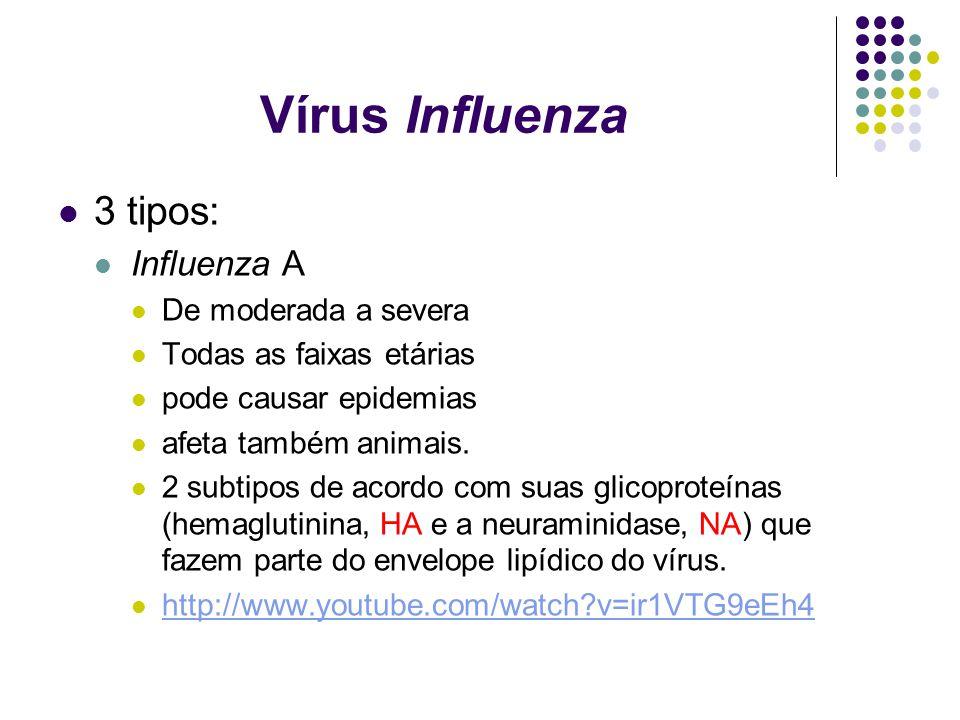 Vírus Influenza 3 tipos: Influenza A De moderada a severa Todas as faixas etárias pode causar epidemias afeta também animais. 2 subtipos de acordo com
