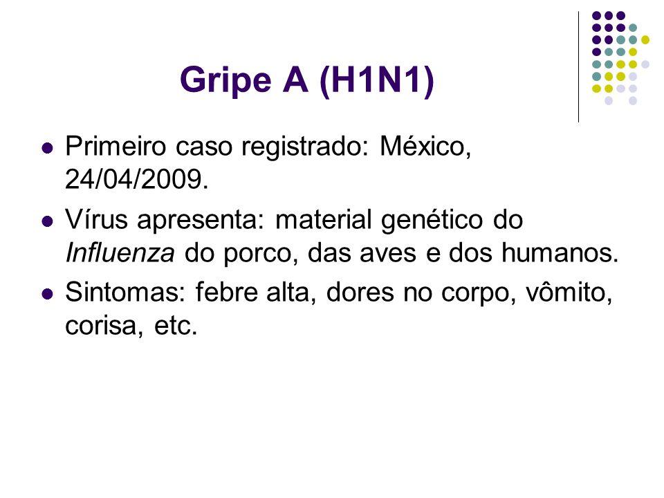 Gripe A (H1N1) Primeiro caso registrado: México, 24/04/2009. Vírus apresenta: material genético do Influenza do porco, das aves e dos humanos. Sintoma