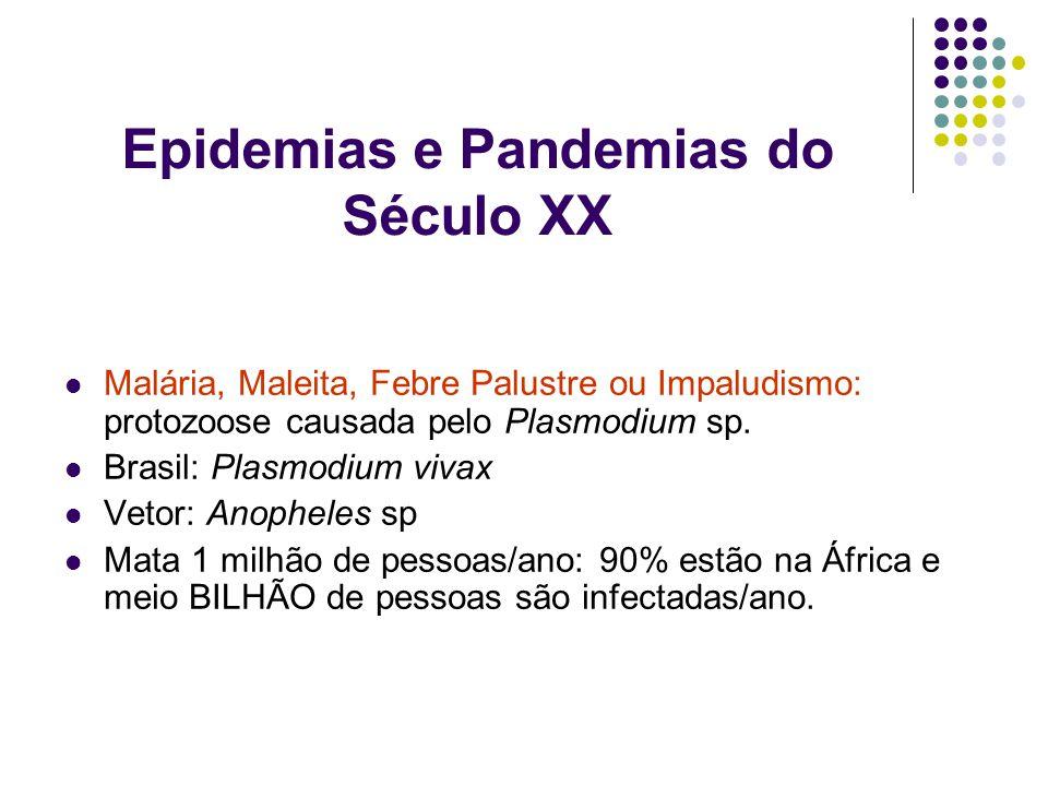 Epidemias e Pandemias do Século XX Malária, Maleita, Febre Palustre ou Impaludismo: protozoose causada pelo Plasmodium sp. Brasil: Plasmodium vivax Ve