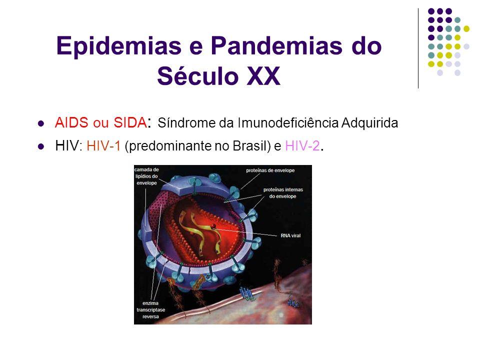 Epidemias e Pandemias do Século XX AIDS ou SIDA : Síndrome da Imunodeficiência Adquirida HIV : HIV-1 (predominante no Brasil) e HIV-2.