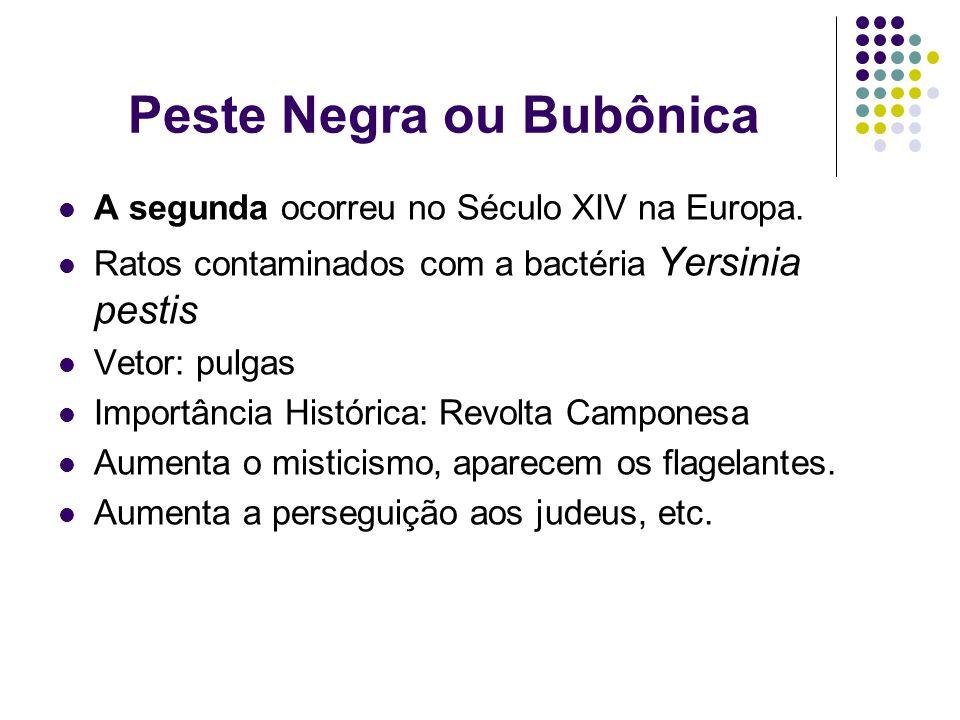 Peste Negra ou Bubônica A segunda ocorreu no Século XIV na Europa. Ratos contaminados com a bactéria Yersinia pestis Vetor: pulgas Importância Históri