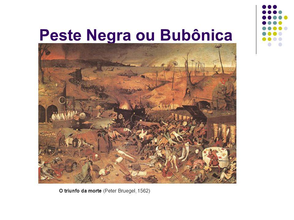 Peste Negra ou Bubônica A terceira ocorreu no séc.