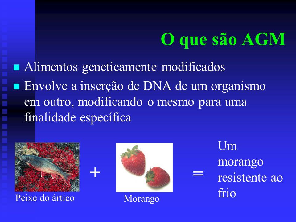 O que são AGM Alimentos geneticamente modificados Envolve a inserção de DNA de um organismo em outro, modificando o mesmo para uma finalidade específi
