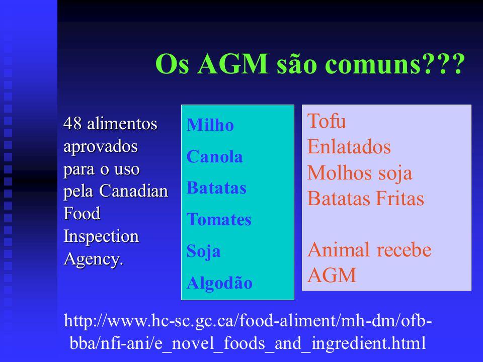 Os AGM são comuns??? 48 alimentos aprovados para o uso pela Canadian Food Inspection Agency. Milho Canola Batatas Tomates Soja Algodão Tofu Enlatados
