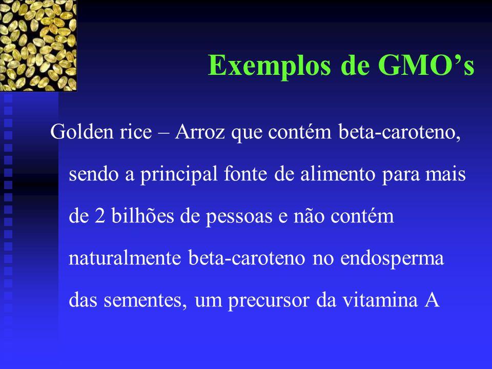 Exemplos de GMO's Golden rice – Arroz que contém beta-caroteno, sendo a principal fonte de alimento para mais de 2 bilhões de pessoas e não contém naturalmente beta-caroteno no endosperma das sementes, um precursor da vitamina A