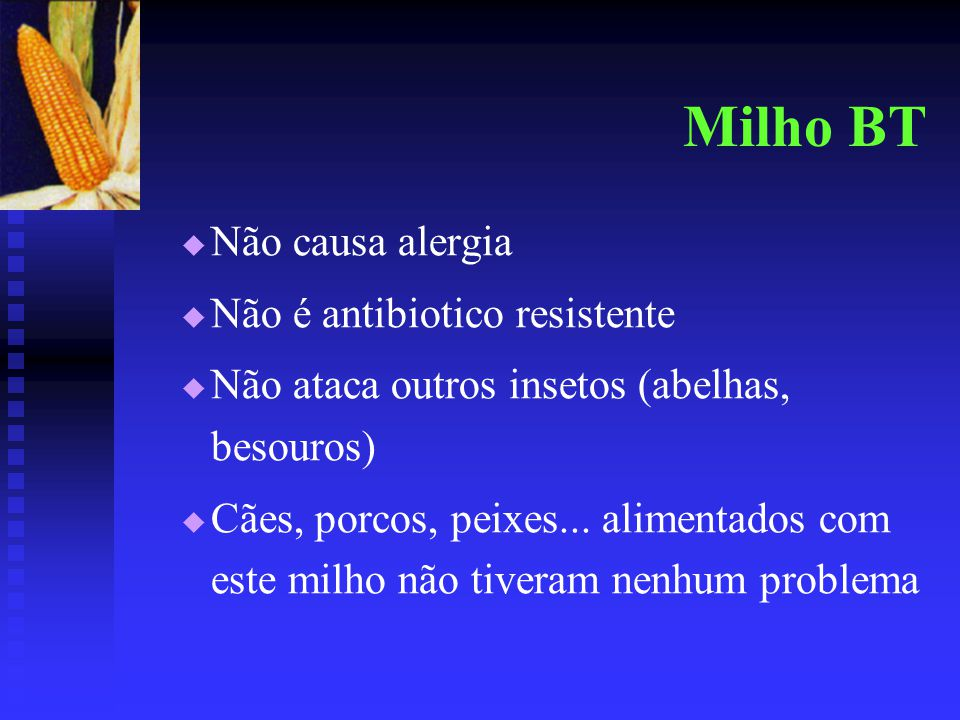 Milho BT   Não causa alergia   Não é antibiotico resistente   Não ataca outros insetos (abelhas, besouros)   Cães, porcos, peixes... alimentad