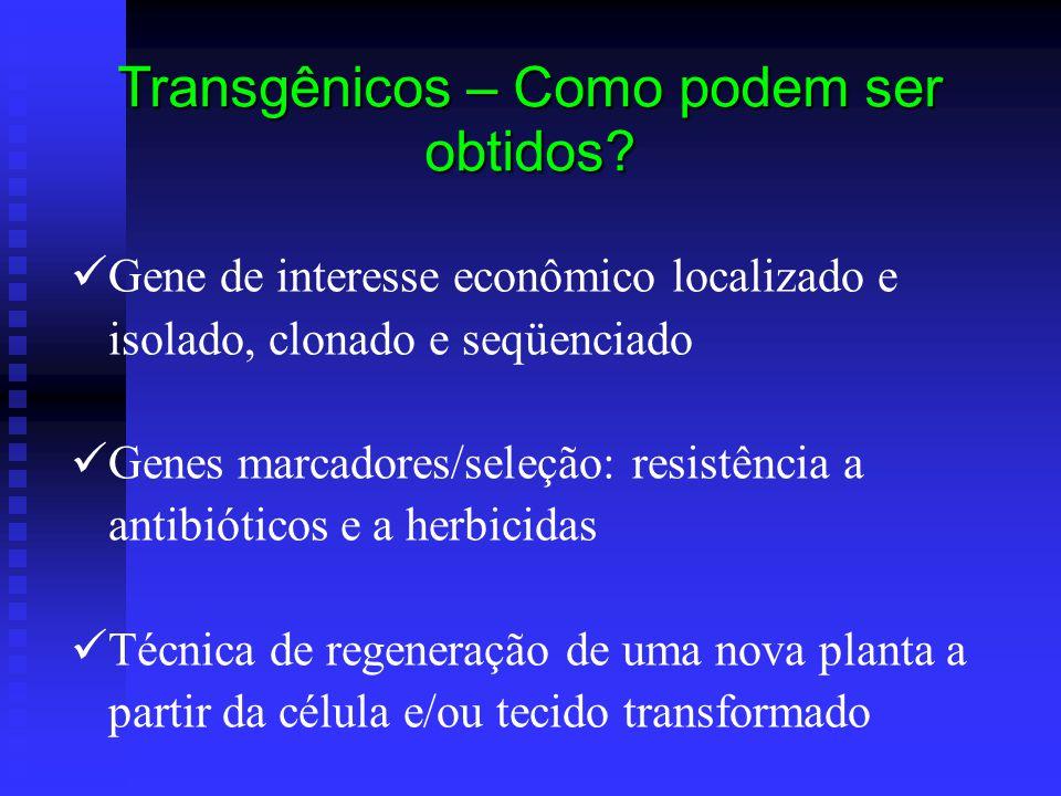 Gene de interesse econômico localizado e isolado, clonado e seqüenciado Genes marcadores/seleção: resistência a antibióticos e a herbicidas Técnica de