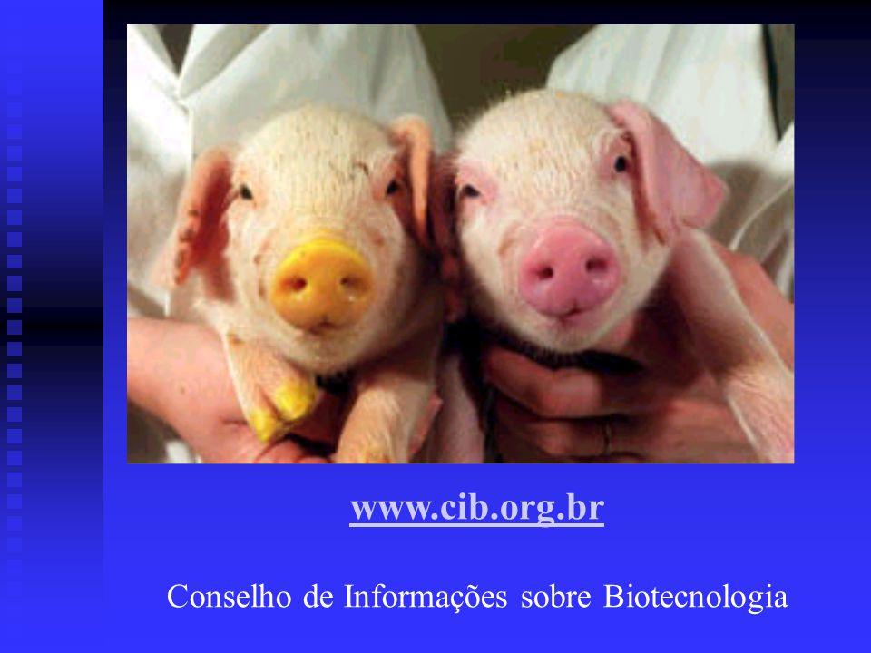 www.cib.org.br Conselho de Informações sobre Biotecnologia