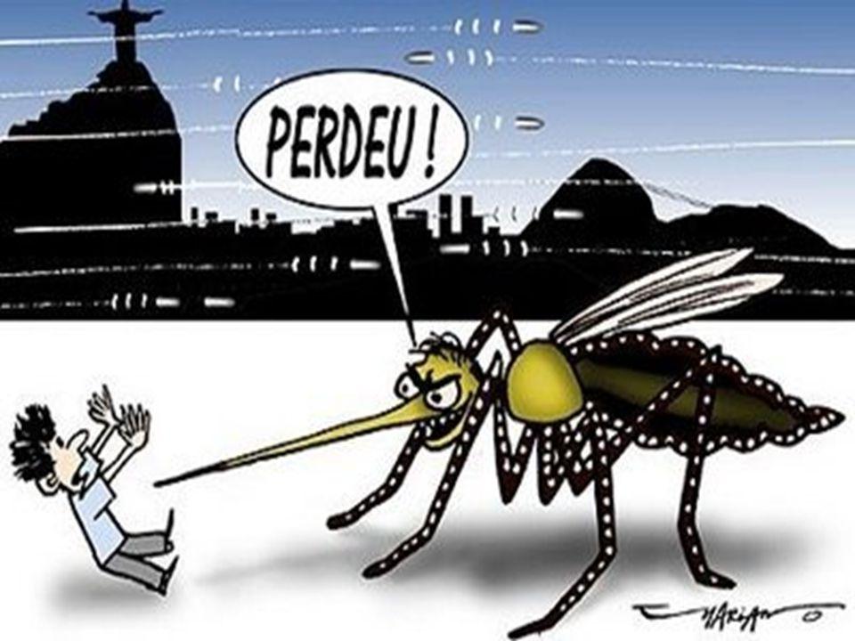 NOTÍCIA: Arrastão Nesta terça-feira, 14 de junho, acontece arrastão contra a dengue no Jardim Florence 2.