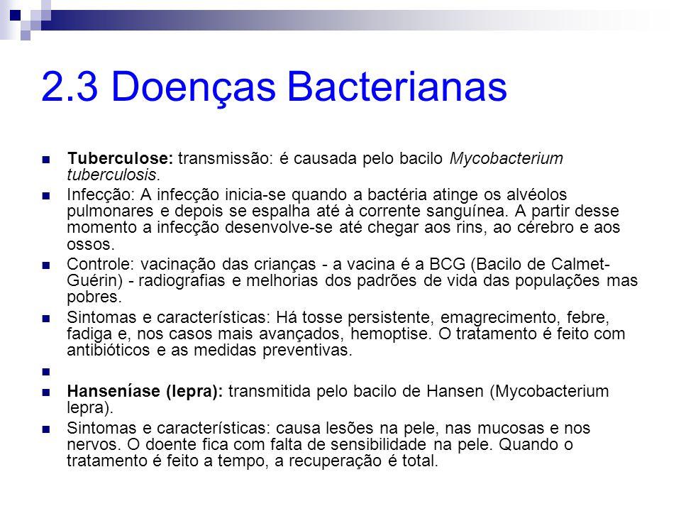 2.4 Doenças Fúngicas A Tinea corporis: afecta a pele sem pelos do corpo.