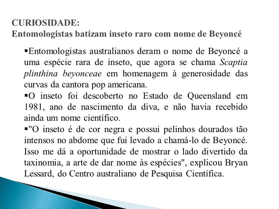 CURIOSIDADE: Entomologistas batizam inseto raro com nome de Beyoncé  Entomologistas australianos deram o nome de Beyoncé a uma espécie rara de inseto, que agora se chama Scaptia plinthina beyonceae em homenagem à generosidade das curvas da cantora pop americana.