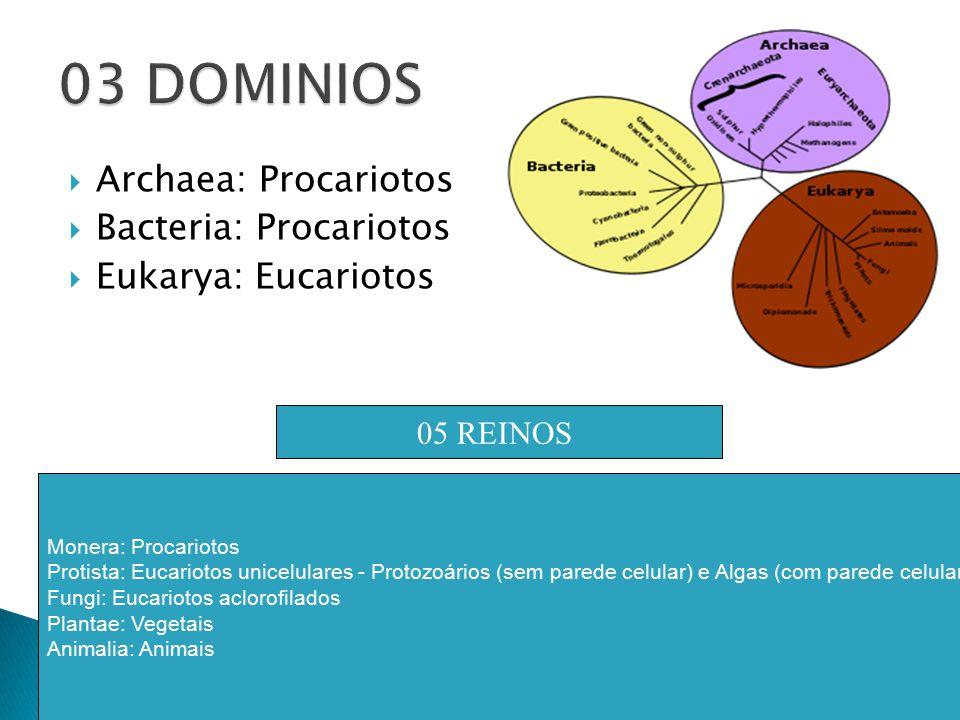 1.Nomes científicos devem ser escritos em latim ou latinizados quando derivados de outra língua.