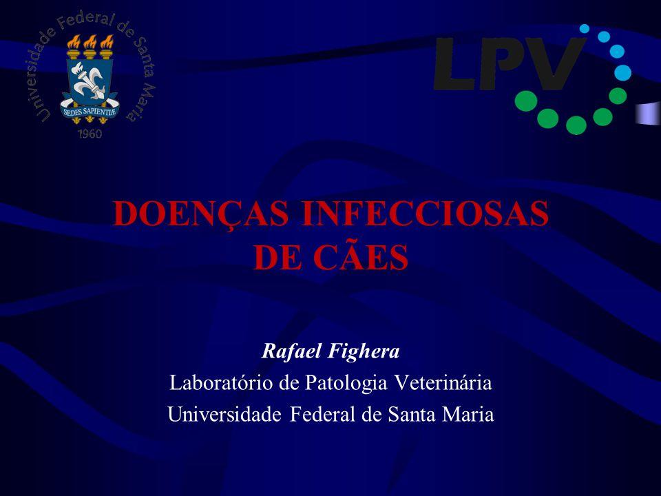 DOENÇAS INFECCIOSAS DE CÃES Rafael Fighera Laboratório de Patologia Veterinária Universidade Federal de Santa Maria