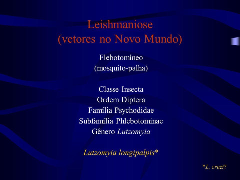 Leishmaniose (vetores no Novo Mundo) Flebotomíneo (mosquito-palha) Classe Insecta Ordem Diptera Família Psychodidae Subfamília Phlebotominae Gênero Lu