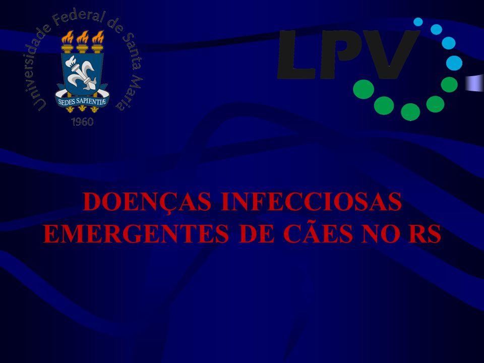 DOENÇAS INFECCIOSAS EMERGENTES DE CÃES NO RS