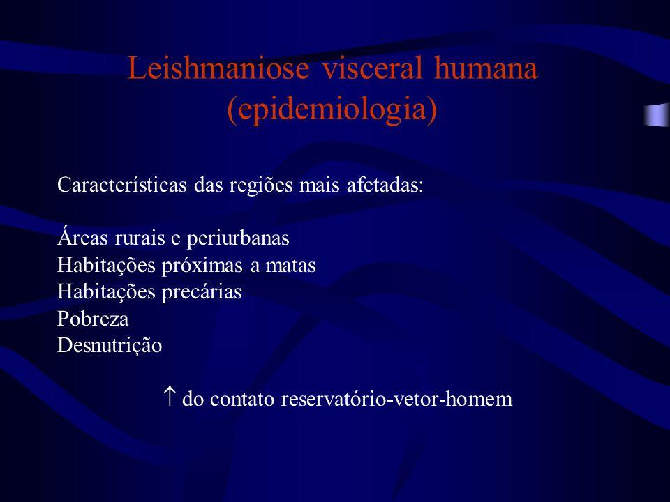 Leishmaniose visceral humana (epidemiologia) Características das regiões mais afetadas: Áreas rurais e periurbanas Habitações próximas a matas Habitaç