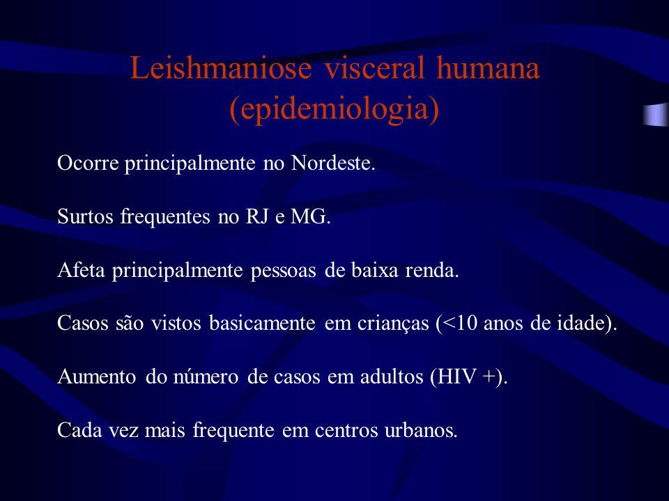 Leishmaniose visceral humana (epidemiologia) Ocorre principalmente no Nordeste. Surtos frequentes no RJ e MG. Afeta principalmente pessoas de baixa re