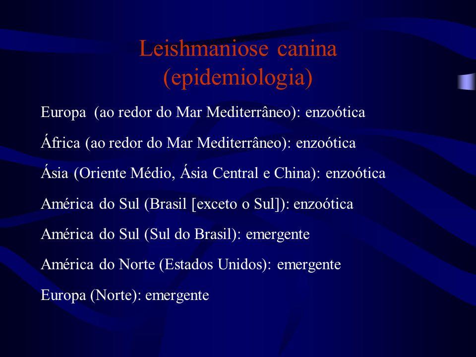 Leishmaniose canina (epidemiologia) Europa (ao redor do Mar Mediterrâneo): enzoótica África (ao redor do Mar Mediterrâneo): enzoótica Ásia (Oriente Mé