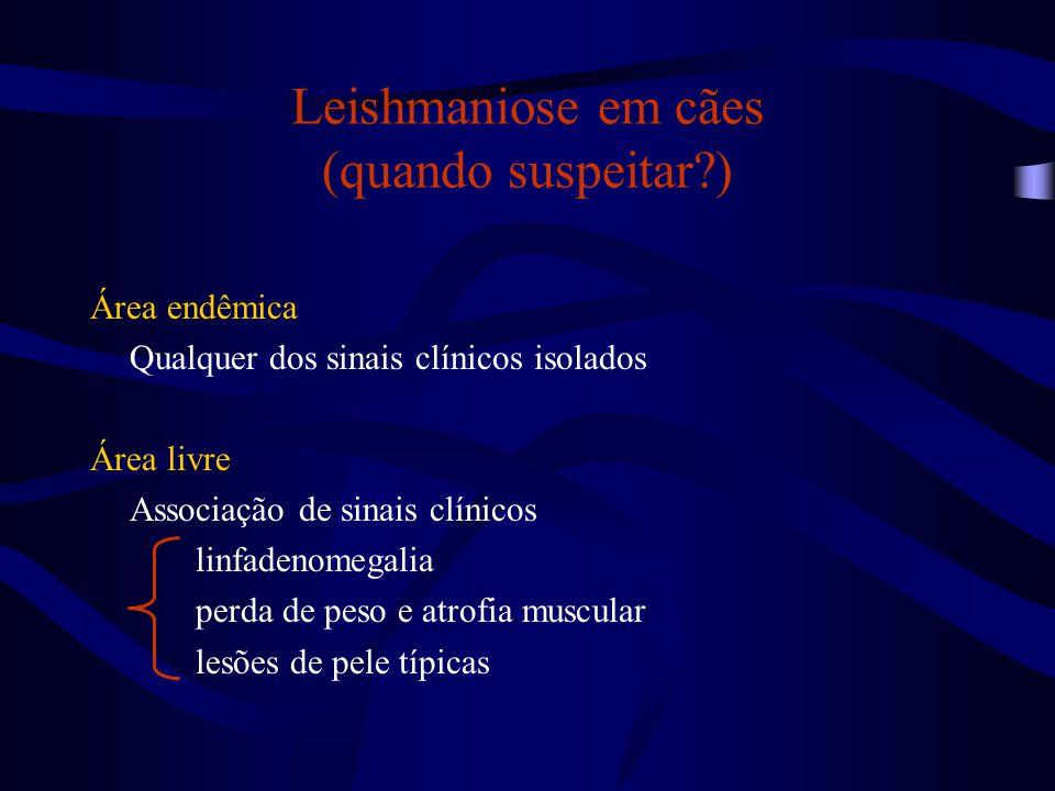 Leishmaniose em cães (quando suspeitar?) Área endêmica Qualquer dos sinais clínicos isolados Área livre Associação de sinais clínicos linfadenomegalia