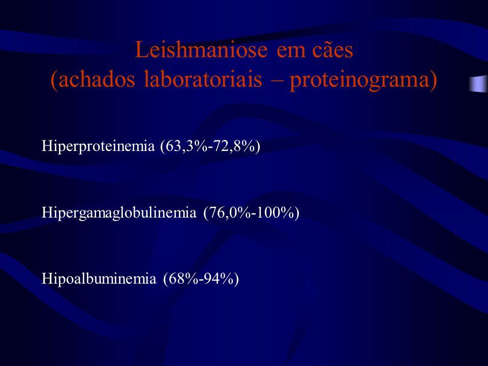 Leishmaniose em cães (achados laboratoriais – proteinograma) Hiperproteinemia (63,3%-72,8%) Hipergamaglobulinemia (76,0%-100%) Hipoalbuminemia (68%-94