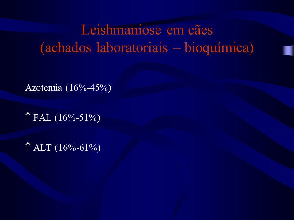 Leishmaniose em cães (achados laboratoriais – bioquímica) Azotemia (16%-45%)  FAL (16%-51%)  ALT (16%-61%)