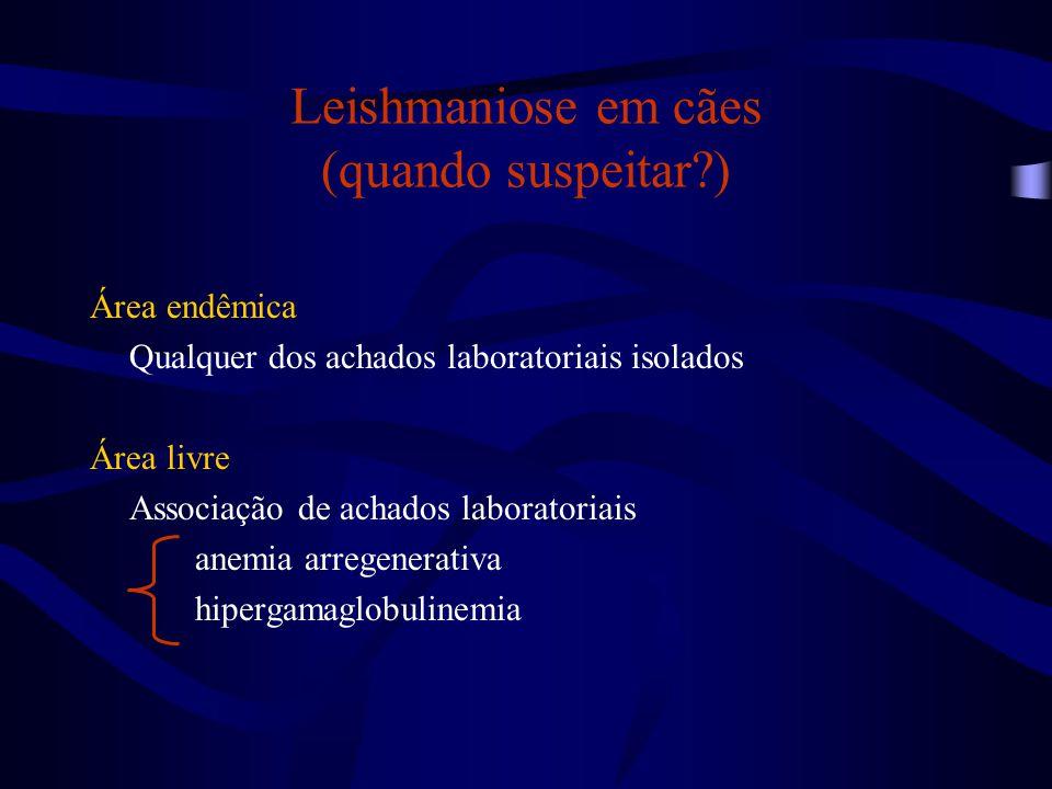 Leishmaniose em cães (quando suspeitar?) Área endêmica Qualquer dos achados laboratoriais isolados Área livre Associação de achados laboratoriais anem