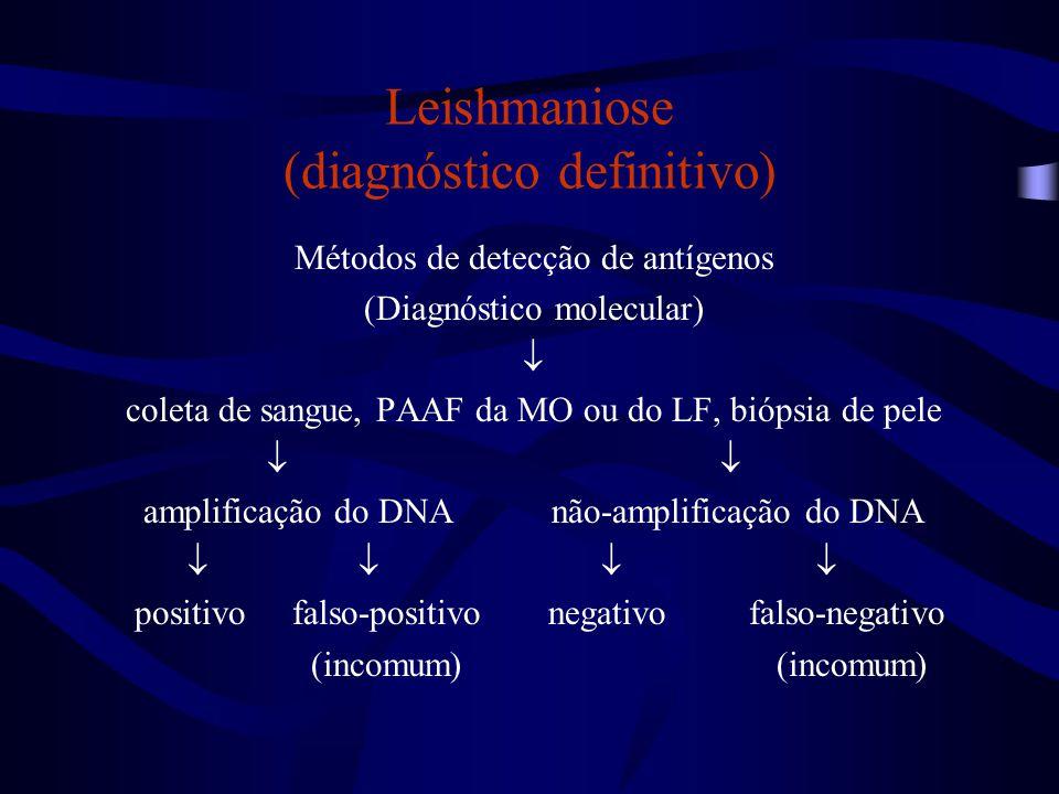 Leishmaniose (diagnóstico definitivo) Métodos de detecção de antígenos (Diagnóstico molecular)  coleta de sangue, PAAF da MO ou do LF, biópsia de pel