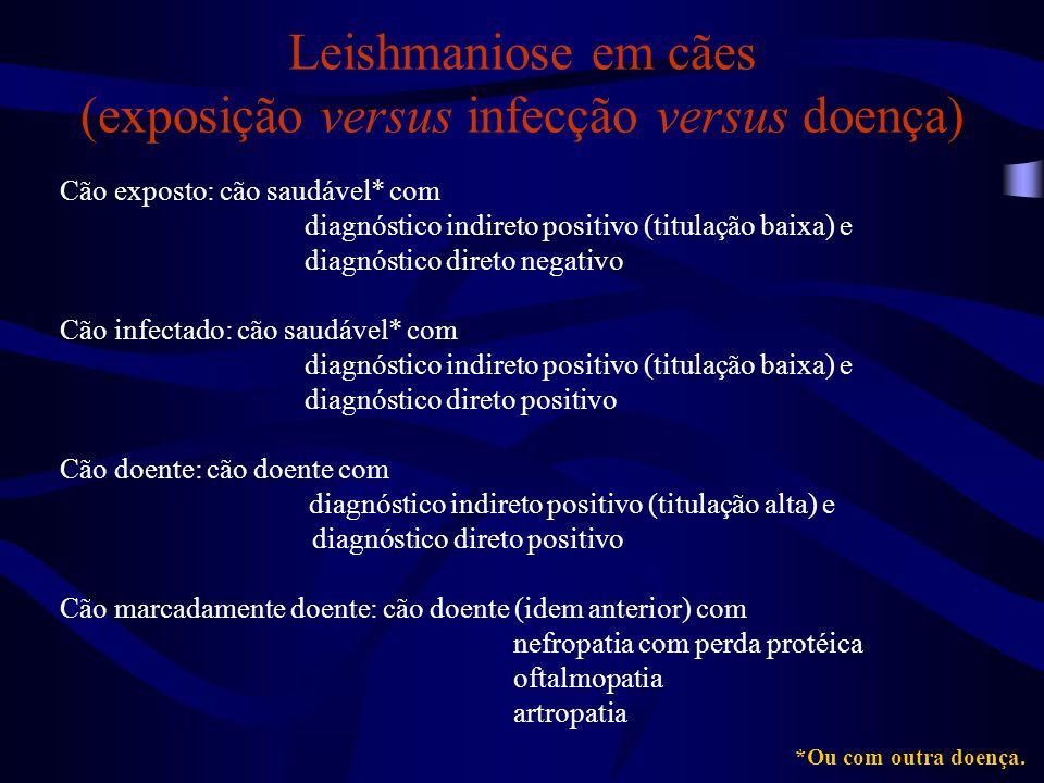 Cão exposto: cão saudável* com diagnóstico indireto positivo (titulação baixa) e diagnóstico direto negativo Cão infectado: cão saudável* com diagnóst
