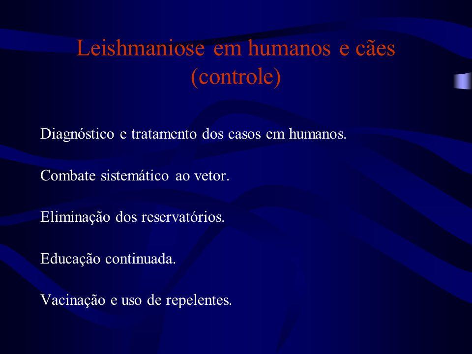 Leishmaniose em humanos e cães (controle) Diagnóstico e tratamento dos casos em humanos. Combate sistemático ao vetor. Eliminação dos reservatórios. E