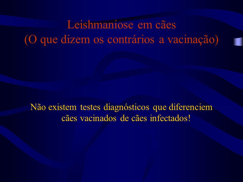 Leishmaniose em cães (O que dizem os contrários a vacinação) Não existem testes diagnósticos que diferenciem cães vacinados de cães infectados!